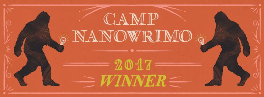 Camp-2017-Winner-Facebook-Cover