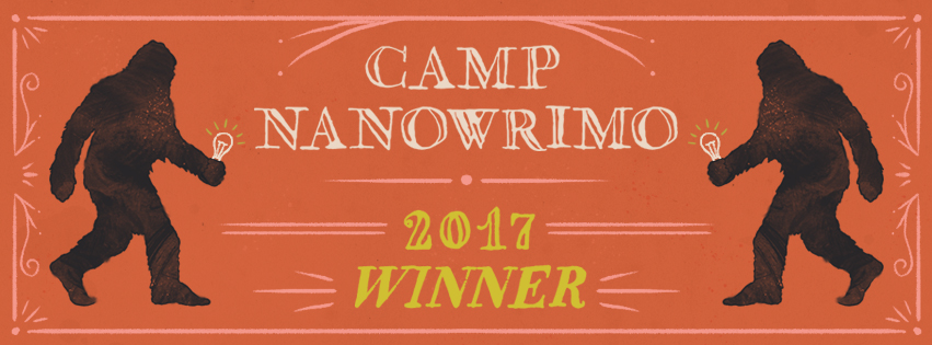 Camp-2017-Winner-Facebook-Cover